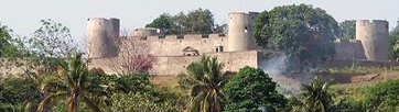 Picture of  fort